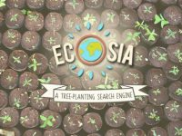 Search engine Ecosia, a green touch in the web